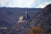 Burg Maus wurde im Jahre 1356 erbaut und war zeitweise Residenz der Kirchenfürsten. Burg Maus ist heute ein Adler- und Falkenhof mit Flugvorführungen von Ende März bis Anfang Oktober.