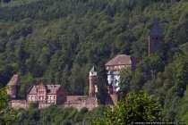 Burg Zwingenberg (Baden Württemberg)