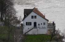 Alte Mühle Gundelsheim - Die Deutschordensstadt am Neckar
