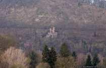 Die Burg Schadeck in Neckarsteinach ist die jüngste Burg, die von Bligger V. von Steinach um 1230 erbaut wurde. Der östliche Turm wurde um ein weiteres achteckiges Obergeschoss im 19. Jahrhundert ergänzt. Die Burganlage konnte nur über einen Serpentinenweg von der Neckarseite erreicht werden. Mittlerweile kann die Burg Schadeck, die auch unter dem Namen Schwalbennest bekannt ist, über einen schmalen Halsgraben, welcher aus dem Fels geschlagen wurde, besucht werden.