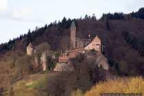 Burg Hirschhorn liegt an der Grenze zwischen Baden-Württemberg und Hessen und ist eine sehr gut erhaltene Burganlage, welche oberhalb der hessischen Stadt Hirschhorn am Neckar liegt. Von der Schloss- und Burganlage wurden das Neckarteil, die Ausgänge des Finkenbachtals und des Ulfenbachtals strategisch kontrolliert. Erbauer der Burg Hirschhorn war einst Johann von Hirschhorn, der die Burganlage um 1260 erbaute. Im 14. Jahrhundert wurde die Burg erweitert und ausgebaut. Ihren schlossartigen und endgültigen Renaissancestil bekam die Burg mit einem Umbau Ende des 16. Jahrhunderts. Die größtenteils aus Sandstein erbaute Burg- und Schlossanlage blieb von Zerstörungen weitgehend verschont und befindet sich daher in sehr gutem Zustand.