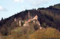Einige Gebäude der Burg Hirschhorn werden privat genutzt, dabei sind der Innenhof und der Turm für Besucher frei zugänglich. Für Interessierte und Burgfans werden kombinierte Stadt- und Burgführungen an Samstagen von Mai bis September angeboten. Ein Hotel mit Restaurant ist seit 1959 im Renaissancebau der Burganlage untergebracht.
