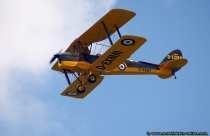 Tiger Moth mit Kennung D-EXMM