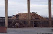Ein Berg mit Zuckerrüben in der Südzuckerfabrik bei 64521 Groß-Gerau. (Geschichte)