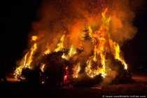 Die Tannenbäume brennen lichterloh