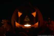 Halloween ist die Zeit der Kürbisse.