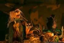 Ein Hexenteller mit einem schwarzen Raaben, einer schwarzen Katze und einem kleinen Kürbis.
