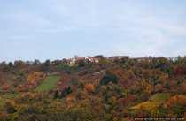 Herbstliche Landschaft mit den Herbstfarben rot, braun, rost und gruen