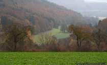 Herbst im Hohe Lohe Kreis