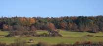 Ungeahnte Weiten eines Panoramablicks und ein gigantisches Farbenspiel zwischen den verschiedenen Herbstfarben. Besonders herrlich, wenn die Sonne mit ihren letzten Kräften die Farben betont.