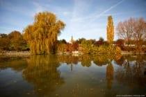 Der Krensheimer See liegt am Orstrand von der Ortschaft Krensheim, ein Stadtteil von Grünsfeld im Main-Tauber-Kreis.