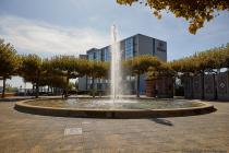 Um den Kurfürstenbrunnen ein Jahr mit Wasser sprudeln zu lassen, fallen zirka 8.000 Euro (Stand 2019) an. Der Hilton-Brunnen war eine zeitlang wasserlos, bis ein Bild vom ausgetrockneten und fontänenarmen Brunnen durch die sozialen Medien ging. Daraufhin beschloss die Mainzer Stadtspitze, den Brunnen auf eigene Rechnung wieder in Betrieb zu nehmen. Das Brunnenwunder von Mainz war geboren.