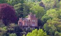 Eine Burg in Miltenberg