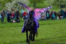 V6A4116-Schmetterling-auf-dem-Pferd