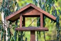 Beim Kauf von einem Vogelhaus ist meist die Problematik: Kaufst Du billig, dann ärgerst Du Dich schon beim Zusammenbau. Dieses Haus in der mittleren Preisklasse ist vernünftig verarbeitet und bedarf keiner großen Modifikation. Ein paar Extraschrauben zu besitzen, zur Versteifung und Stabilität, ist nie verkehrt. Die vier Standfüße, nicht sichtbar, wurden eingegraben. Um das Vogelhaus wurden dann der Herbstschnitt tief in den Boden gesteckt, so dass eine Anflugmöglichkeit vor dem Vogelhaus vorhanden ist.