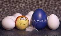 Viele Eier von gluecklichen Huehnern.