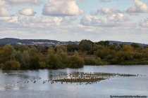 Das Natur- und Vogelschutzgebiet umfasst zirka 200 Hektar im mittelfränkischen Landkreis Weißenburg-Gunzenhausen.