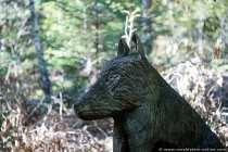 Wolf Hardheim