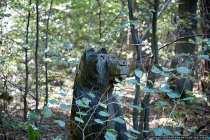 Skulptur Bär