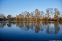 Der Marstadter See in der kalten Winterzeit ist teils zugefroren und teils aufgetaut. [EOS5D Mark4 | ISO100 | f4,0 | 1/640s | 35mm]