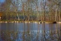 Der gefrorene und teils aufgetaute See lässt die Spiegelungen unterschiedlich wirken. Marstadter See am 19. Dezember 2020 gegen 10.30 Uhr Winterzeit. [EOS5D Mark4 | ISO250 | f5,0 | 1/320s | 105mm]
