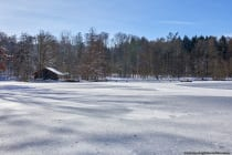 Marstadter See bei 97922 Lauda-Königshofen am 14. Februar 2021. [EOS5D Mark4 | ISO100 | f8,0 | 1/500s | 35mm]