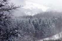 Nebel behinderte leicht die Sicht auf die umliegenden Dörfer