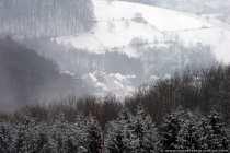 Der Nebel wurde mit der Zeit stärker
