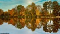 Herbstbild am Marstadter See mit Spiegelung im Wasser.