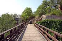 Rheingrafenstein