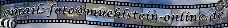 www.muehlstein-online.com